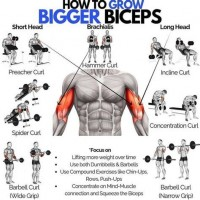 how to get big arms with weight loss exercises